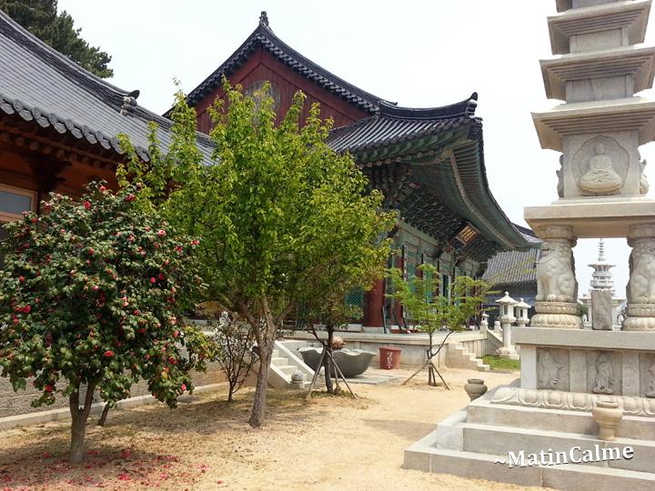 temple-Haeunjeongsa-24