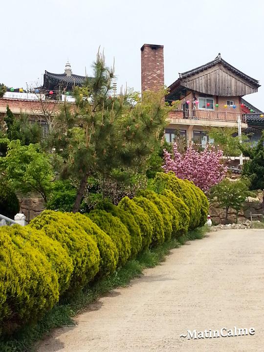 temple-Haeunjeongsa-28