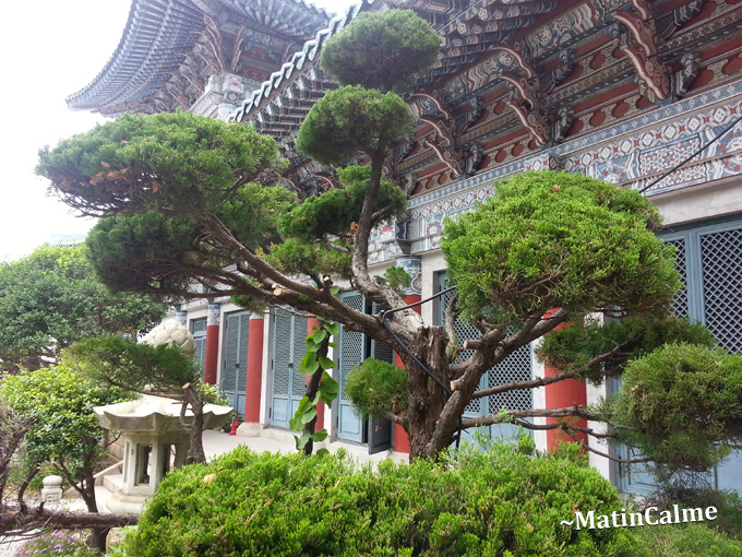 Dongmyeong-Bulwon-10