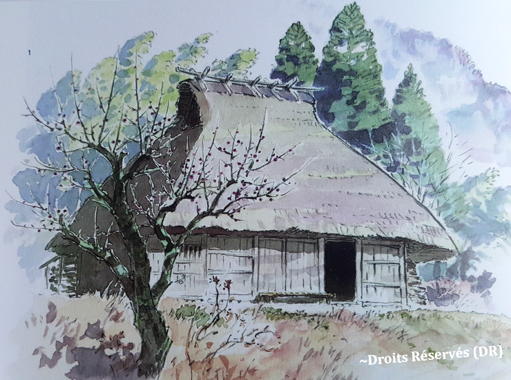 11-Ghibli